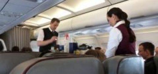 top 10 best airplane earplugs for flying